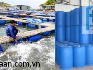 Kết bè cá bằng thùng phuy cao cấp Phú Hòa An