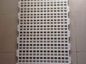 Tấm nhựa lót sàn chuồng dê Phú Hòa An