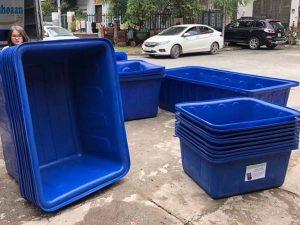 Các mẫu thùng nhựa nuôi cá giá rẻ tại Phú Hòa An